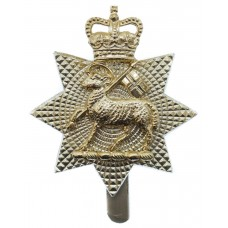 The Queen's Royal Surrey Regiment Anodised (Staybrite) Cap Badge