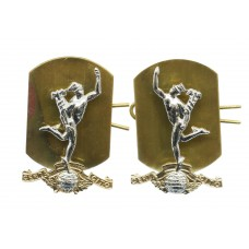 Pair of Royal Signals Anodised (Staybrite) Collar Badges