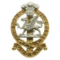 Queen's Royal Regiment Anodised (Staybrite) Cap Badge