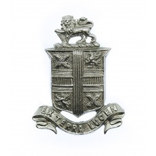 St. Helen's Police Collar Badge