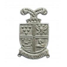 Falmouth Docks Police Collar Badge