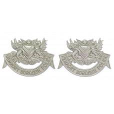 Pair of Newport Borough Police Collar Badges