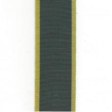 Territorial Efficiency Medal / TEM Ribbon – Full Size