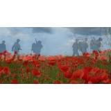 In Flanders fields the poppies blow...