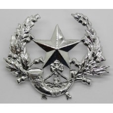 Cameronians (Scottish Rifles) Anodised (Staybrite) Cap Badge