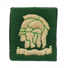 163rd Infantry Officer Cadet Training Unit (Artists Rifles) Cloth