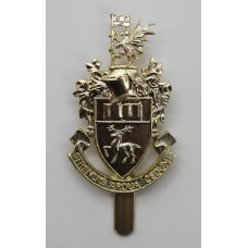 Southampton University O.T.C. Anodised (Staybrite) Cap Badge