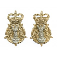 Pair of Leicestershire & Derby Yeomanry Anodised (Staybrite) Collar Badges