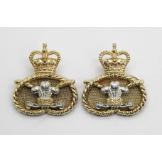 Pair of Staffordshire Regiment Anodised (Staybrite) Collar Badges