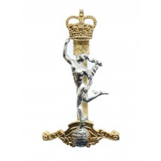 Scarce Royal Signals Early Anodised (Staybrite) Cap Badge