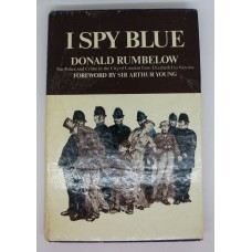 Book - I Spy Blue