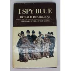 Book - I Spy Blue