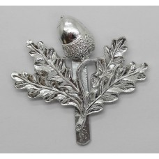 South Notts Hussars Anodised (Staybrite) Cap Badge