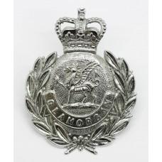 Glamorgan Constabulary Wreath Cap Badge - Queen's Crown