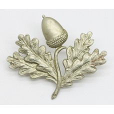 South Notts Hussars Cap Badge