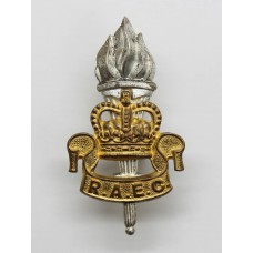 Royal Army Educational Corps (R.A.E.C.) Officer's Dress Cap Badge