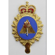 Canadian Forces Training Development Branch Cap Badge