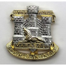 Devon & Dorset Regiment Anodised (Staybrite) Cap Badge