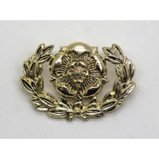 Royal Hampshire Regiment Anodised (Staybrite) Collar Badge