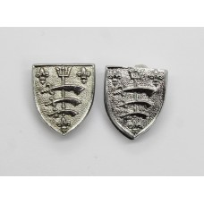 Pair of Essex and Southend-on-Sea Police Collar Badges