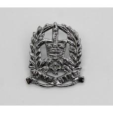 Hampshire Constabulary Collar Badge - Queen's Crown