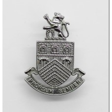 Gloucestershire Constabulary Collar Badge