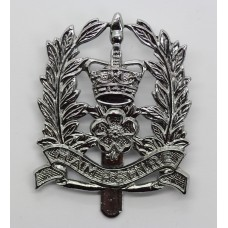 Hampshire Constabulary Constables Cap Badge - Queen's Crown