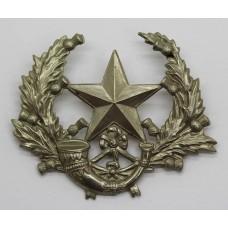 Cameronians (Scottish Rifles) Cap Badge