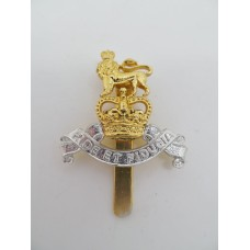 Royal Army Pay Corps Anodised (Staybrite) Beret Badge - Queen's Crown