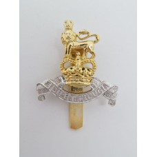 Royal Army Pay Corps (R.A.P.C.) Anodised (Staybrite) Beret Badge - Queen's Crown