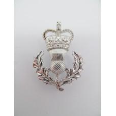 Queen's Own Highlanders Anodised (Staybrite) Sporran Badge - Queen's Crown