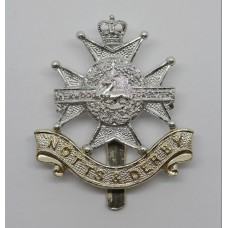 Notts & Derby Regiment (Sherwood Foresters) Anodised (Staybrite) Cap Badge - Queen's Crown