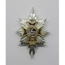 Worcestershire & Sherwood Foresters Anodised (Staybrite) Cap Badge