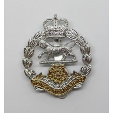 Royal Hampshire Regiment Anodised (Staybrite) Cap Badge - Queen's Crown