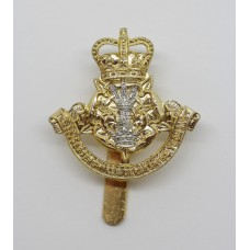Leicestershire & Derbyshire Yeomanry Anodised (Staybrite) Cap Badge - Queen's Crown