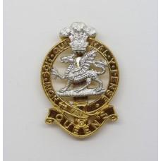 Queen's Regiment Anodised (Staybrite) Cap Badge