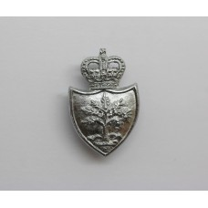 Worcestershire Constabulary Collar Badge - Queen's Crown