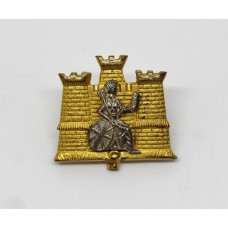 1st Battalion Royal Anglian Regiment Officer's Collar Badge
