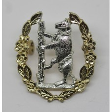 Queen's Own Warwickshire & Worcestershire Yeomanry Anodised (Staybrite) Cap Badge