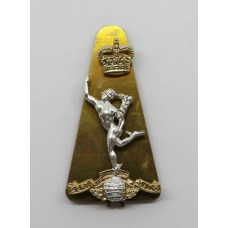 Royal Corps of Signals Anodised (Staybrite) Cap Badge - Queen's C