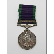 Campaign Service Medal (Clasp - Borneo) - Pte. P.D. Llewellyn, In