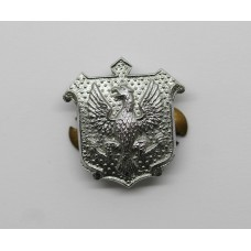East Riding of Yorkshire Constabulary Collar Badge
