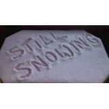 Still snowing!